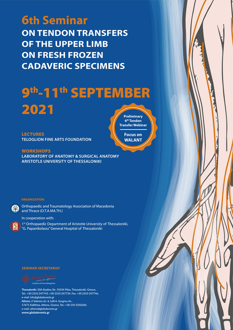 6th Seminar on tendon transfers of the upper limb on fresh frozen cadaveric specimens